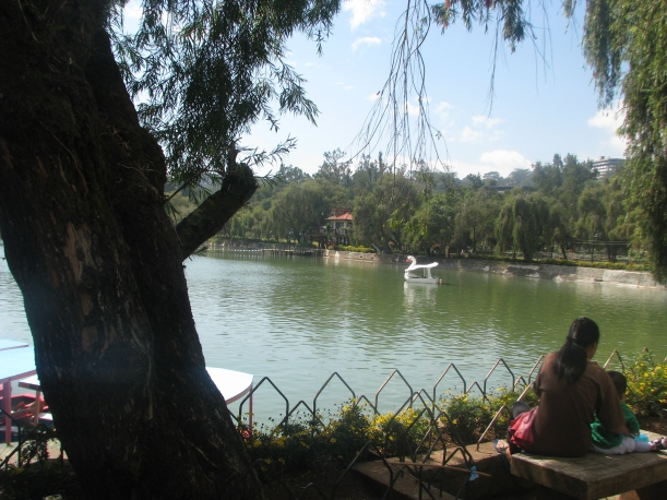 The lake in the middle of Burnham Park.