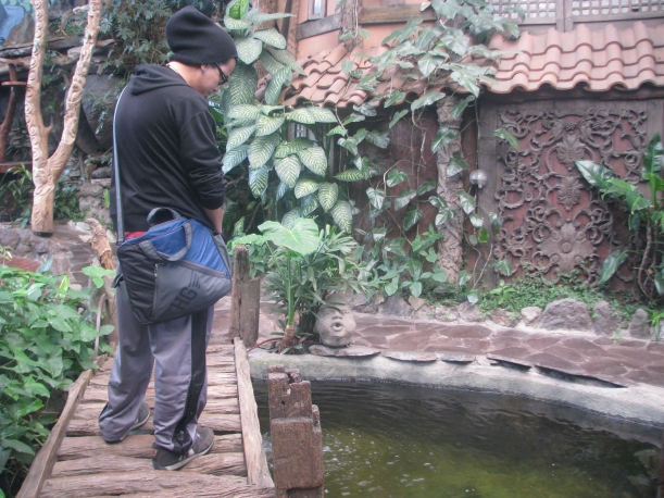 Hubby looking at the carps in the small pool.