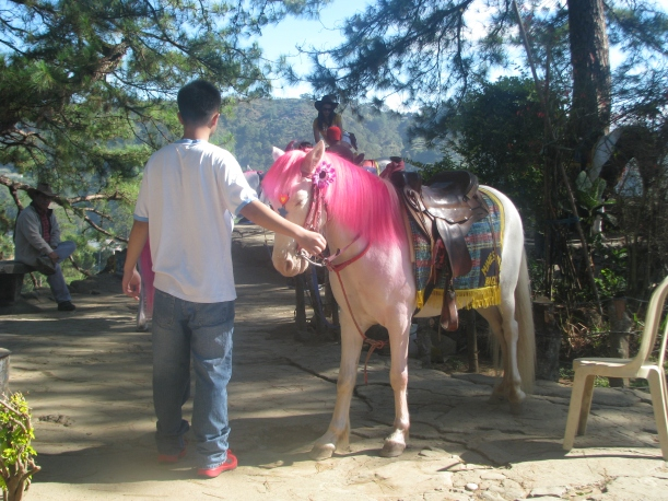 A pink-maned pony. Kinda reminded me of Rainbow Brite.